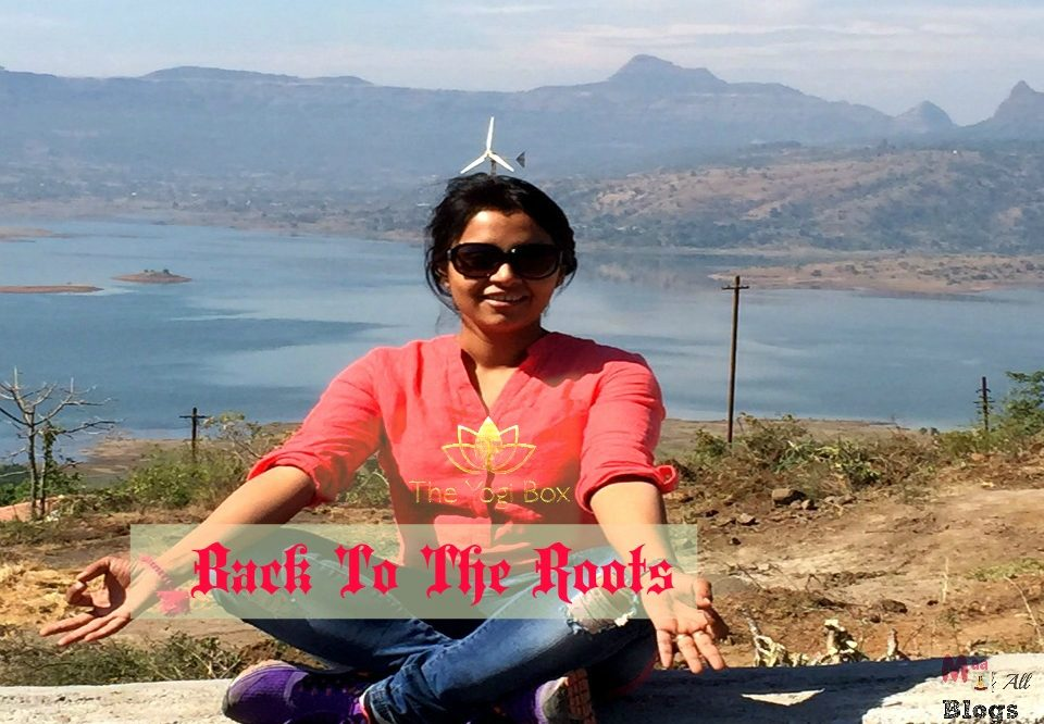 Back To The Roots – The Yogi Box