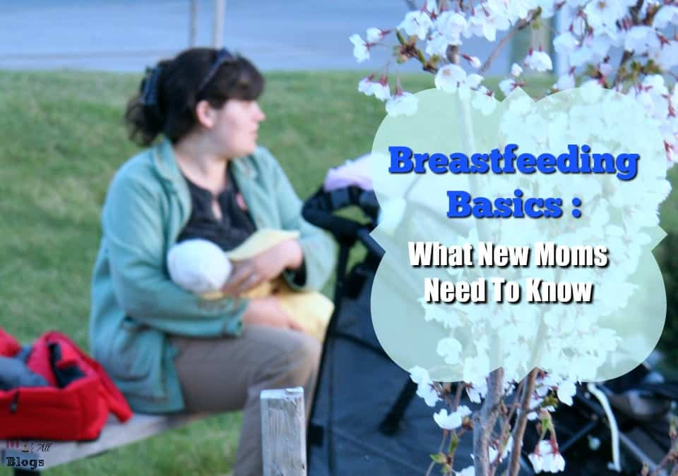 Breastfeeding Basics What New Moms Need To Know